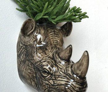 wandvaas nijlpaard