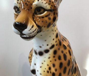 Cheetah 3 beeld