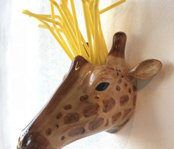 giraffe voor webshop